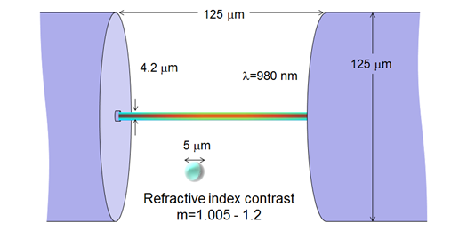 Typical optical trap